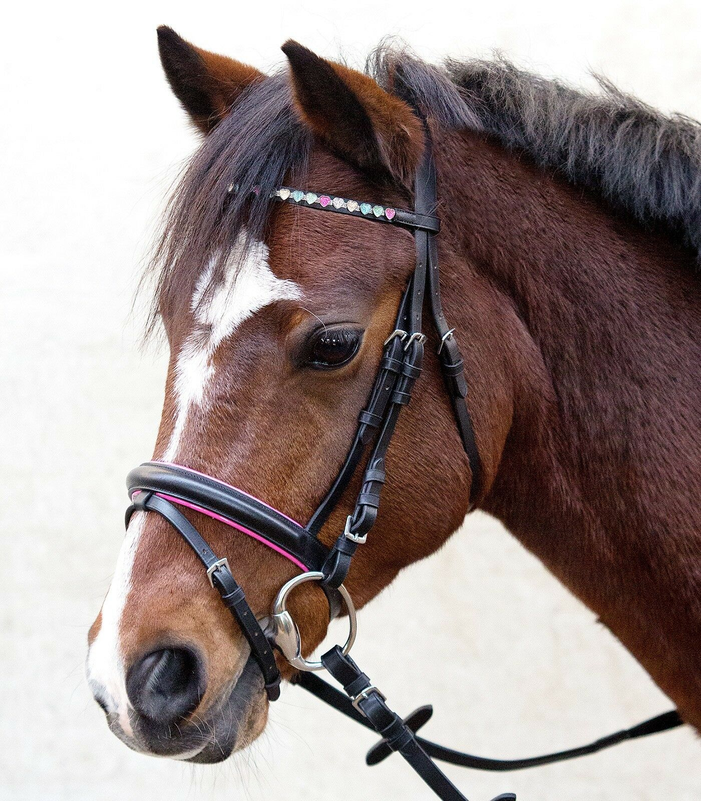 Snaffle, Ponytrense, Bridle, Ponytrensenzaum Sparkling Hearts Msh Sh , P