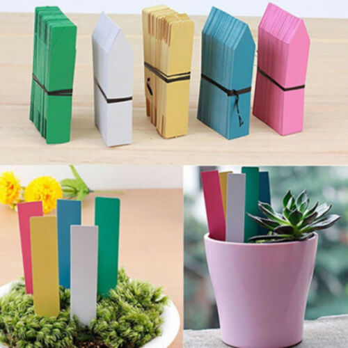 New Garden Plant Pot Markers Plastic Stake Tags Yard Court Nursery Seed Label S