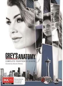 GREY-039-s-Anatomy-Season-14-NEW-DVD