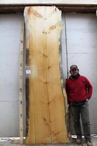 Eastern Pine live edge raw wood slab dine table rustic ...