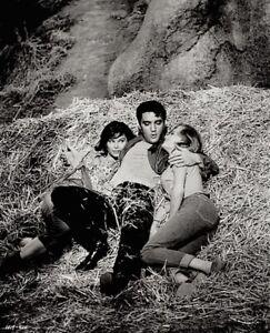 Elvis-Presley-1964-Vintage-Press-Photo-Kissin-Cousins-Yvonne-Craig-Date-Stamp
