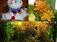 Kit de fertilizzanti per acquario