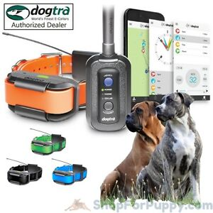 Details about Dogtra Pathfinder 2-Dog System - GPS Tracking/Remote Trainer  with 2 Collars