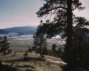 Snowfall in Moreno Valley Colfax County New Mexico February 1943 Photo Print