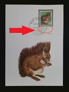 Enthousiaste Suisse Mk 1966 846 Animaux écureuil Squirrel Carte Maximum Card Mc Cm C8373-afficher Le Titre D'origine