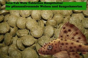 Beta-MULTIVITAMIN-Tablettenhauptfutter-fuer-Welse-250ml-1A-Qualitaet-gut-guenstig