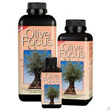 GROWTH TECHNOLOGY OLIVE FOCUS 100ml fertilizzante coltivazione Ulivo fertilizer