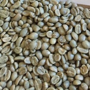 Unroasted Coffee Beans >> Details About 19 Colombia Green Unroasted Coffee Beans Medelli Excelso Ep New 2019