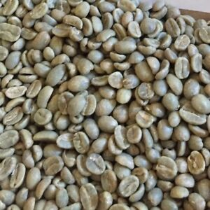 Unroasted Coffee Beans >> Details About 10 Colombia Green Unroasted Coffee Beans Medelli Excelso Ep New For 2018