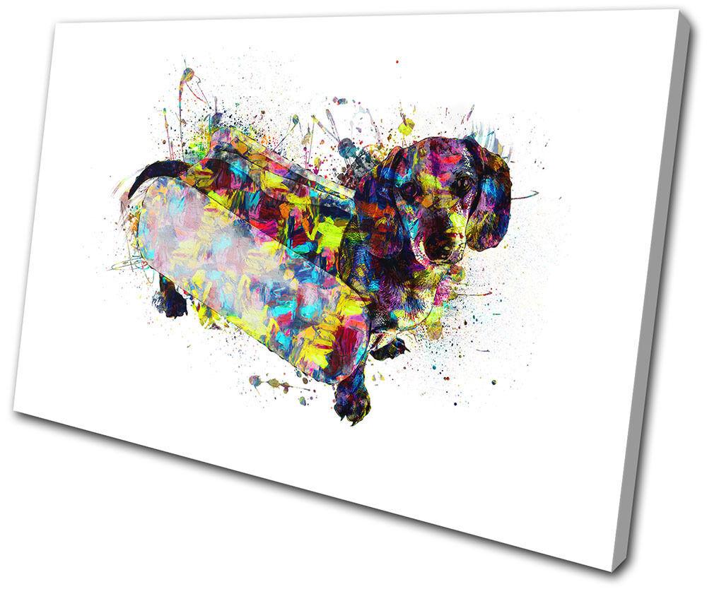Dachshund Sausage Dog Colourful Animals SINGLE TELA parete arte foto stampa