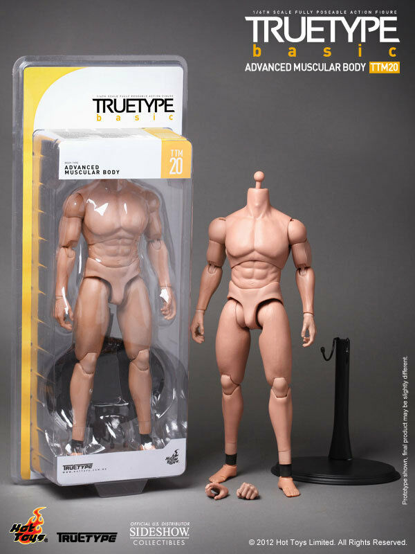 1 6 HOT TOYS TTM20 ADVANCE MUSCULAR BODY POSEABLE ACTION FIGURE TRUE TYPE BASIC