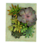 Portrait-Gardens-DIY-Succulent-Garden-Vertical-Wall-Planter thumbnail 1