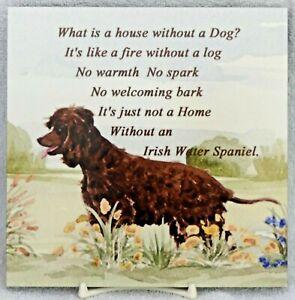 IRISH-WATER-SPANIEL-DOG-GLOSSY-HARDBOARD-PLAQUE-TILE-SANDRA-COEN-ARTIST-PRINT