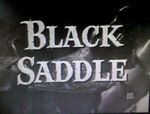 BLACK-SADDLE-COMPLETE-SERIES-ALL-44-EPISODES-ON-DVD-9-10-QUALITY