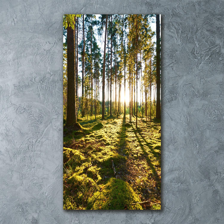 Wandbild Kunst-Druck auf Hart-Glas senkrecht 60x120 Kiefernwald