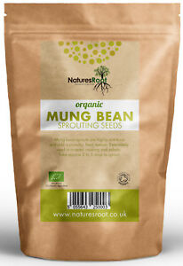 Organic-Mung-Bean-Sprouting-Seeds-Superfood-Non-GMO-Microgreen-Sprouts