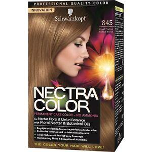 Details zu 3x Nectra Color 845 Praline Blonde Light Brown Permanent Hair  Dye Colour 3-Pack
