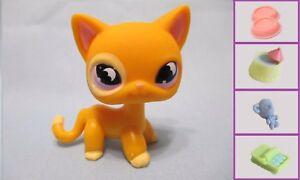 Littlest-Pet-Shop-Cat-Orange-Moon-855-Free-Accessory-Authentic-Lps-Exclusive