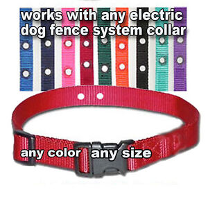 Underground-Electric-Dog-Fence-Replacement-Collar-NEW