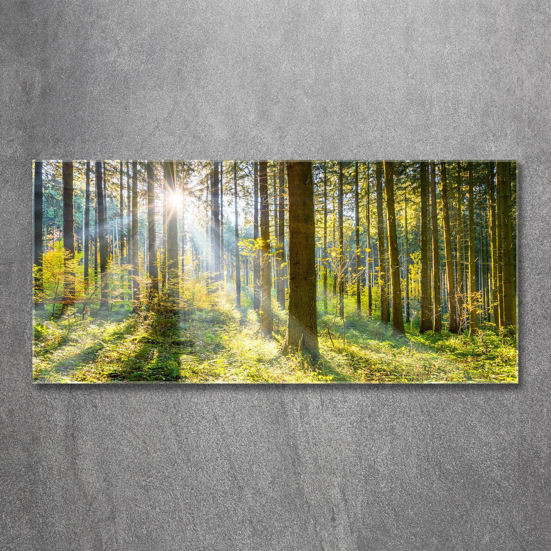 Glas-Bild Wandbilder Druck auf Glas 120x60 Deko Landschaften Wald in der Sonne
