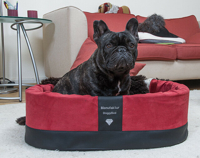 DoggyBed Orthopädischer Hundekorb Paddy Style 70 x 45 x 22 cm ROT Hundebett