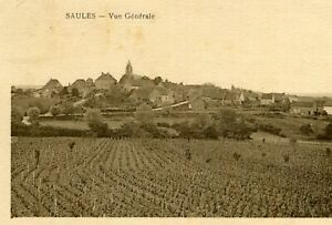 Carte-SAULES-Vue-generale