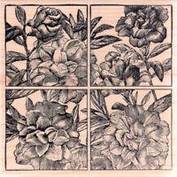 Magenta Rubber Stamp Botanical Rose Flowers 4 Tile Quad Sq Free Us Ship Mntd