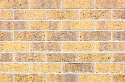Ehrlichkeit Strangpress Klinker-riemchen Nf-format Gelb Grau Bunt Riemchen Verblender SorgfäLtige Berechnung Und Strikte Budgetierung Klinker Heimwerker