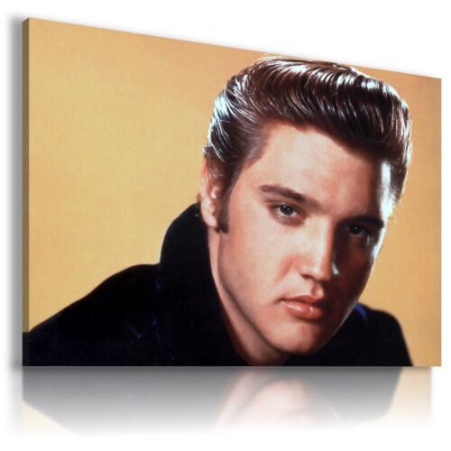 ELVIS PRESLEY  The King Of Rock /& Roll   Canvas Wall Art Picture  EP8 X MATAGA