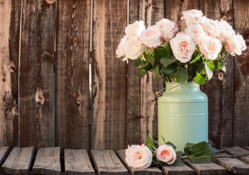 Vlies Fototapete Tapete Wandbild Rosen in einer Vase 311796/_VEMVT