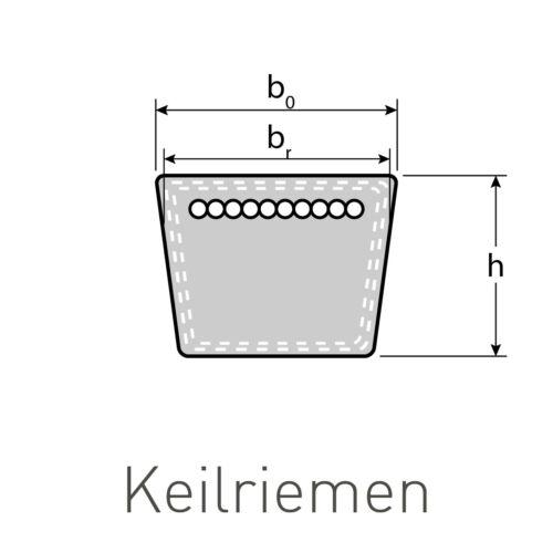 Courroies trapézoïdales BX//x17 x 11 x 1320 Li//BX 52-flancs ouverts formgezahnt