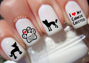 Chinese Crested Dog Nail Art Stickers Transfers Decals Set Of 40 Ebay