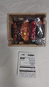 Bandai Kamen Rider DX Evol controlador Prendedores Cinturón construir F S Japón con seguimiento usado
