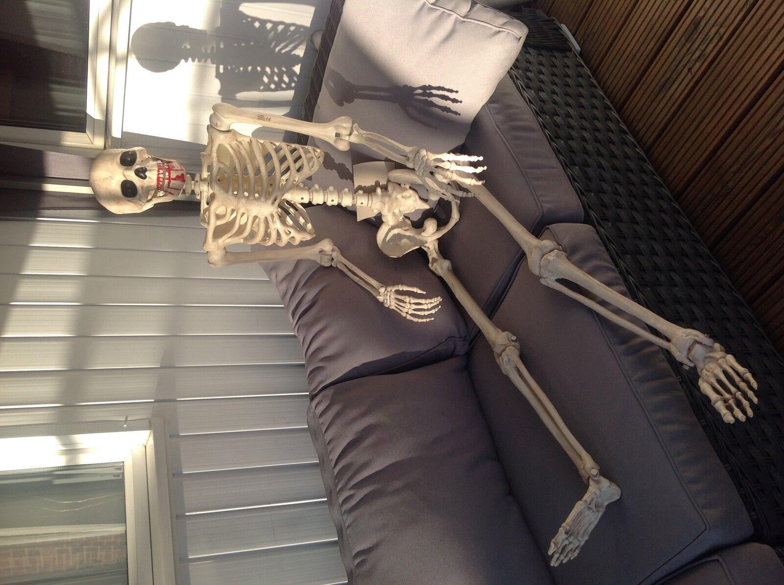 Halloween Bundle DEL 5 FT (environ 1.52 m) Squelette Grand Prop