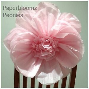 Details About Paperbloomz Large Paper Peonies X 5 Bulk Tissue Paper Flowers Wall Decorations