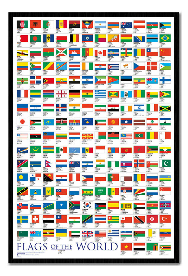 Flags Of The World Large Poster Framed Cork Pin Notice Board With Pins