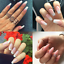 Clear-Pink-White-Quick-Builder-Gel-Nail-Art-Building-Extension-UV-Gel-Glue-30ml thumbnail 2