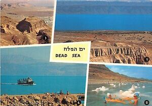 BR4164 The dead sea multiview    israel
