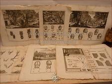 CACCIA con CANI, DIDEROT/Panckoucke 1780 Set di 7 tavole doppie Arte venatoria