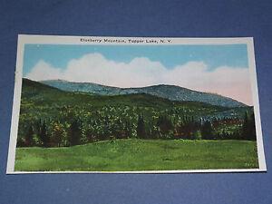 VINTAGE BLUEBERRY MOUNTAIN TUPPER LAKE   NEW YORK   POSTCARD