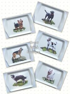 Delightful-Doggie-Snack-Tray-6-Different-Dogs-to-Choose-From