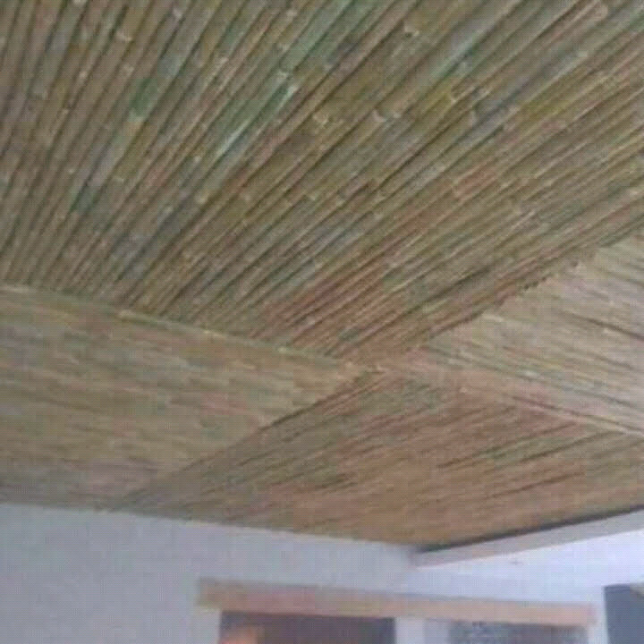 Bombo fenceing and ceiling