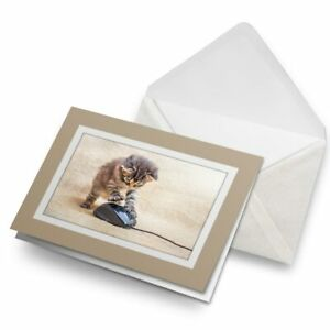 Greetings-Card-Biege-Funny-Kitten-Mouse-Playing-Cat-14602
