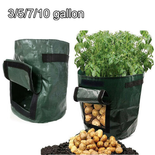 3 5 10 gallon Potato Grow Bag Tomato Planting Bag PE Fabric Root Pot Veg Garden