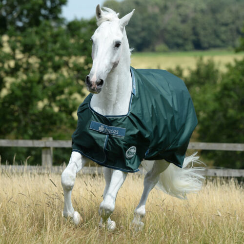 Green All Sizes Bucas Green-line 100 Horse Rug Turnout