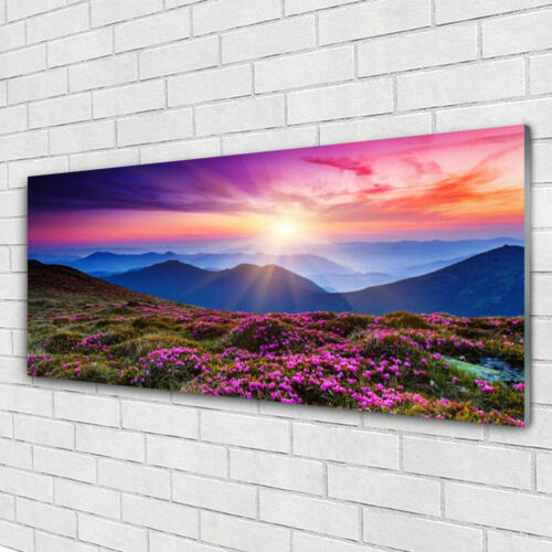 Glass print Wall art 125x50 Image Picture Mountains Meadow Flowers Landscape