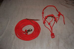 RED-14-039-LEAD-ROPE-WITH-BULL-SNAP-amp-MATCHING-STIFF-4-KNOT-TRAINING-HALTER