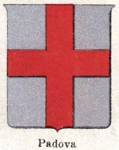 Padua-Small-Crest-1901-Chromolithography-Print-Ancient-mat