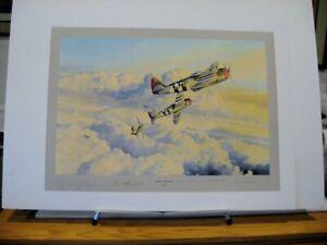 Zemke-039-s-Wolfpack-P-47-Thunderbolt-Gabreski-Robert-Taylor-Signed-Aviation-Art