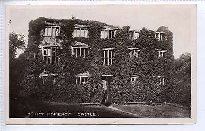 (ld249-364) Real Photo Of Berry Pomeroy Castle, 1906 Used Vg+